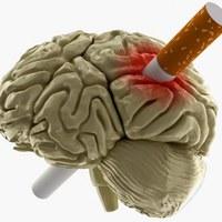 Wirkung von Nikotin